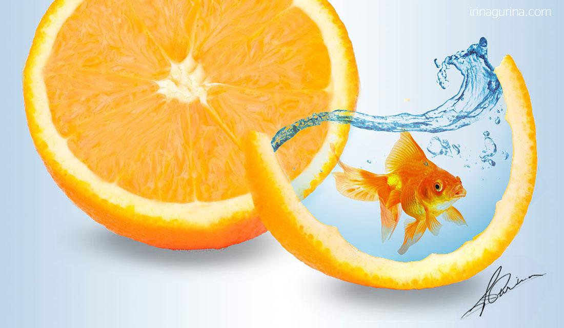 diseno-minimalista-naranja-pez-de-oro